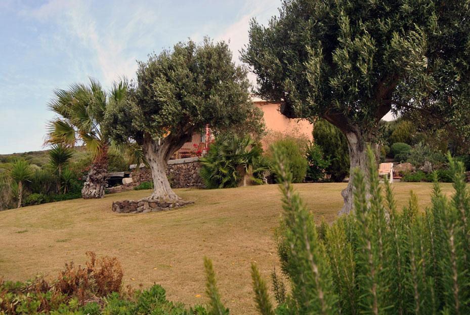 case vacanza affitto privati sardegna del sud ovest